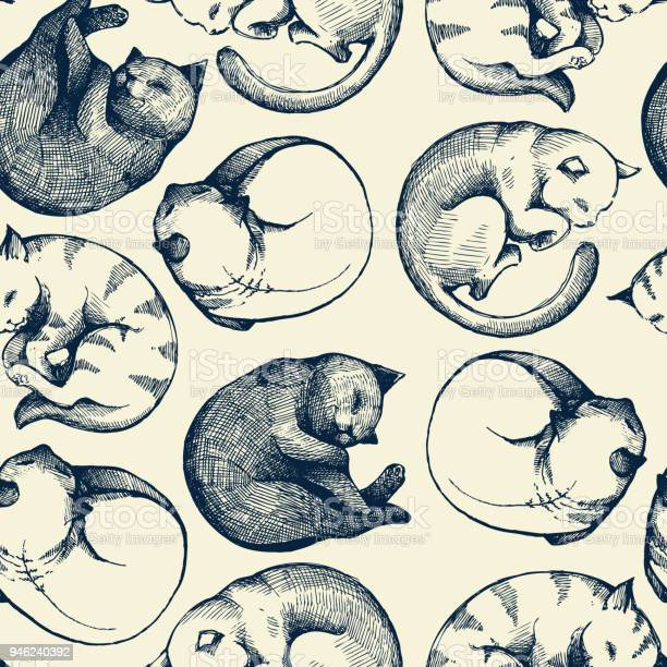 Seamless pattern with sleeping cats and colorful background sketch vector id946240392?b=1&k=6&m=946240392&s=612x612&h=2jklbvqn3ikxwzql wnn1pn4s be2g wayjr1t8yxzo=