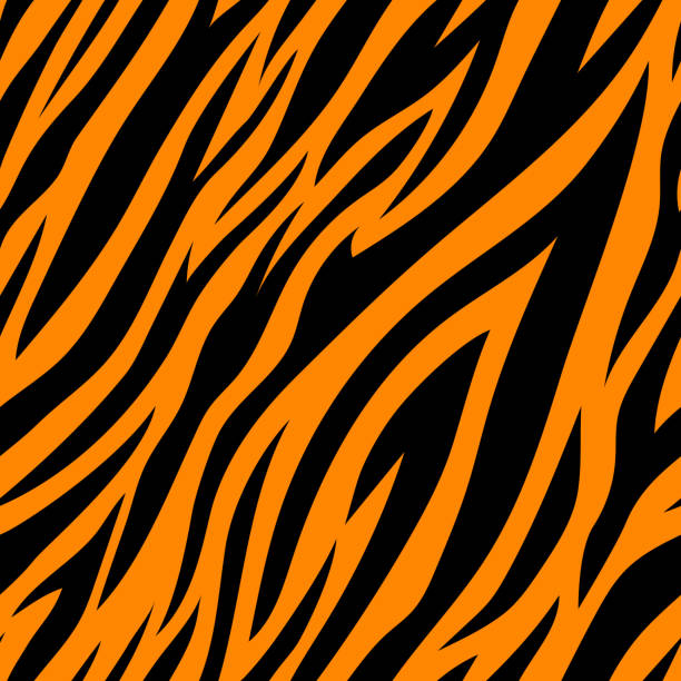 Seamless pattern with tiger stripes. Seamless pattern with tiger stripes. Animal print. animal captivity building stock illustrations
