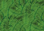 Seamless pattern with trendy tropical summer motifs, exotic leaves and plants. Green, black colors.