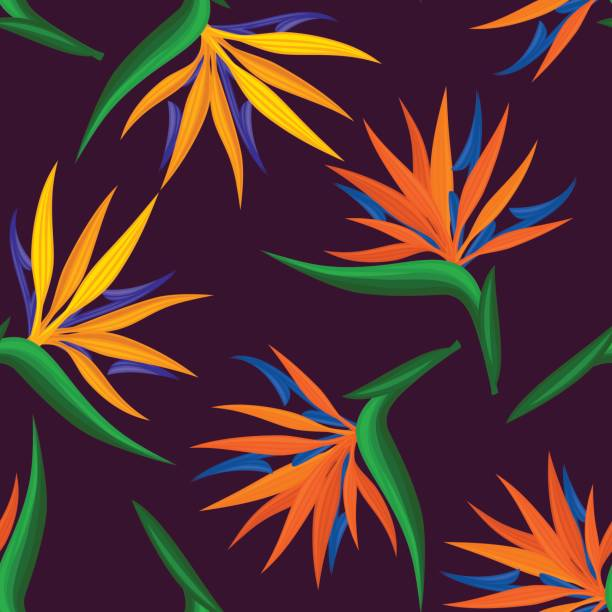 seamless pattern with tropical, exotic strelitzia, bird of paradise seamless pattern with tropical, exotic strelitzia, bird of paradise, crane flower. endless floral repeatable texture bird of paradise plant stock illustrations