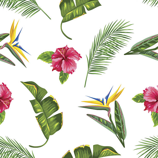 Seamless pattern with tropical leaves and flowers. Palms branches, bird Seamless pattern with tropical leaves and flowers. Palms branches, bird of paradise flower, hibiscus. bird of paradise plant stock illustrations