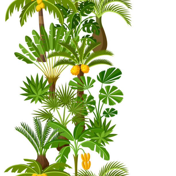 Seamless pattern with tropical palm trees. Exotic tropical plants Illustration of jungle nature vector art illustration