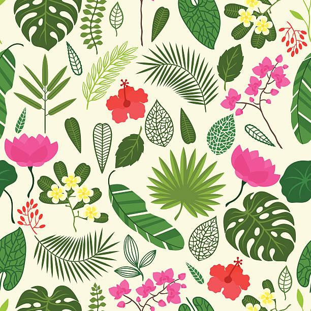 nahtlose muster mit tropischen pflanzen, blättern und blumen. - hibiskusgarten stock-grafiken, -clipart, -cartoons und -symbole