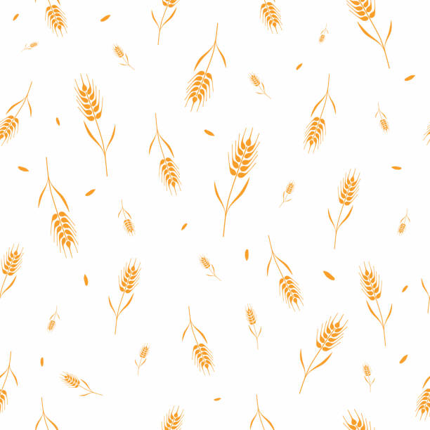 Seamless pattern with whole grain seeds organic, natural background isolated on white background flat style design vector illustration. Wheat, barley or rye ears with straw chaotic version Seamless pattern with whole grain seeds organic, natural background isolated on white background flat style design vector illustration. Wheat, barley or rye ears with straw chaotic version bread backgrounds stock illustrations