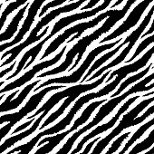 Seamless pattern with zebra fur print. Exotic animalistic texture.