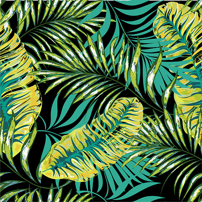 Seamless Patterns From Palm Fronds Jungle Leaves Hand Drawing Stock Illustration - Download Image Now