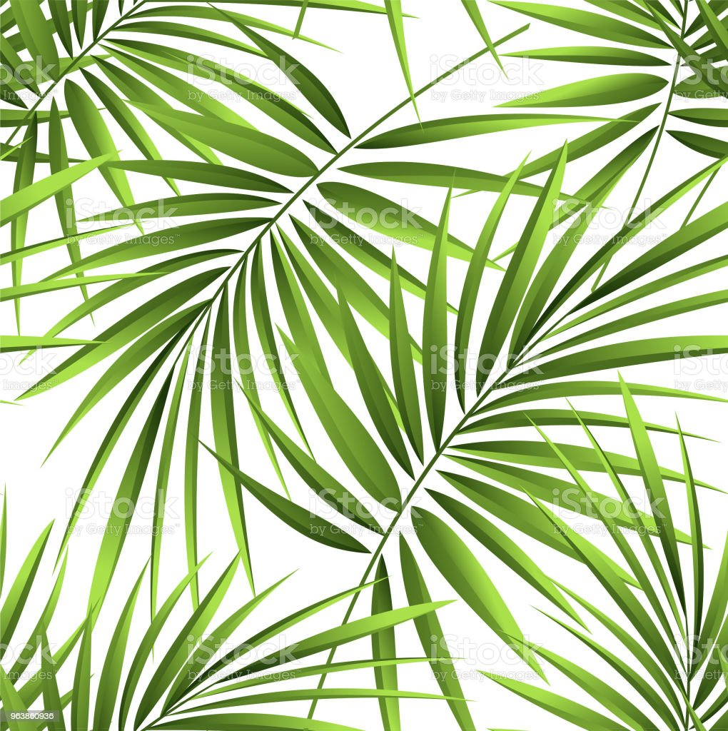 Seamless patterns from tropical palm branches, jungle leaves. Hand drawing. - Royalty-free Art stock vector