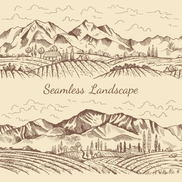 bildbanksillustrationer, clip art samt tecknat material och ikoner med sömlösa bilder av natur landskap. vingård eller landsbygden illustrationer - vinodling