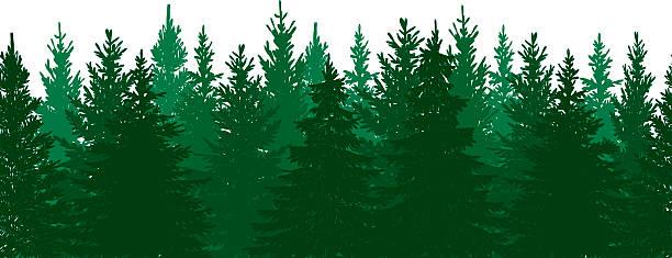 シームレスな松の森の背景 ベクターアートイラスト