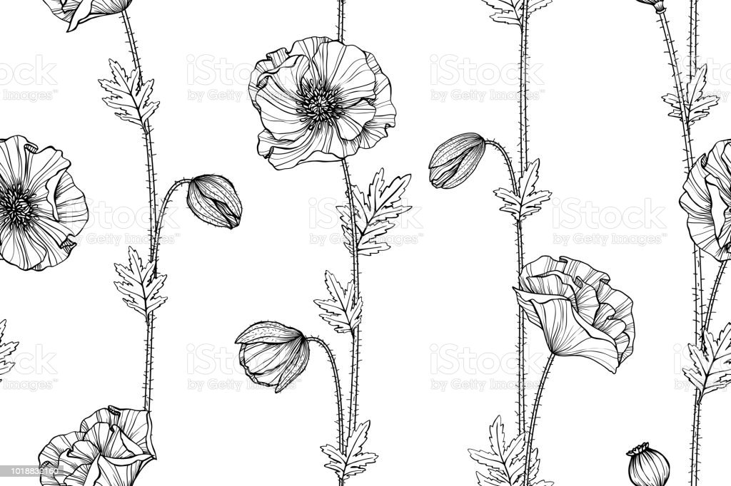 Seamless Poppy Flower Pattern Background Black And White With