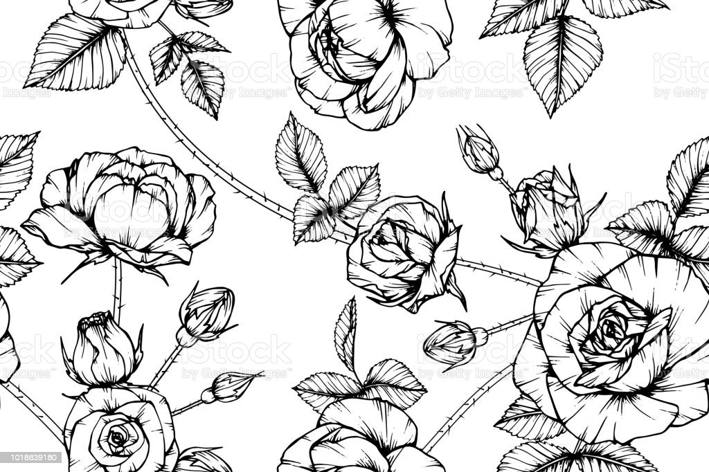 Seamless rose flower pattern background black and white with drawing seamless rose flower pattern background black and white with drawing line art illustration royalty mightylinksfo