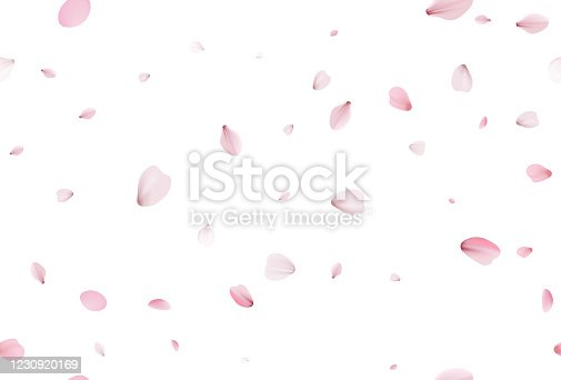 istock Seamless sakura petals. Falling realistic cherry petals 1230920169