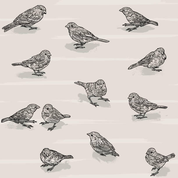 Seamless Scattered Sparrow Bird Pattern vector art illustration
