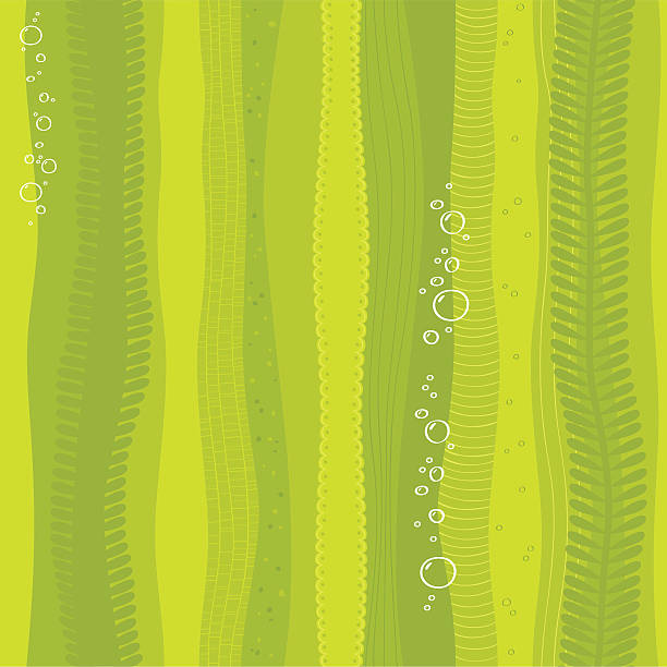 Seamless seaweed background vector art illustration