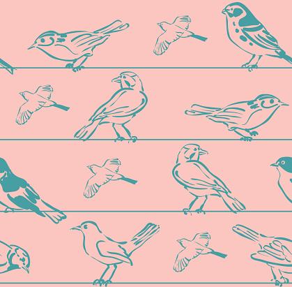 Seamless Set Bird Sketchs