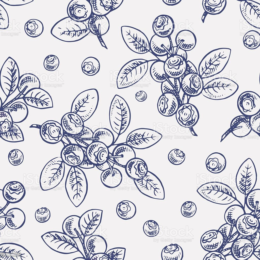 seamless sketch blueberry vector art illustration