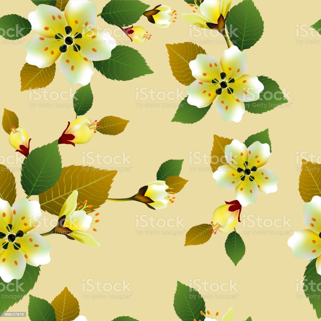Seamless Spring Background With White Flowers With Green And Yellow
