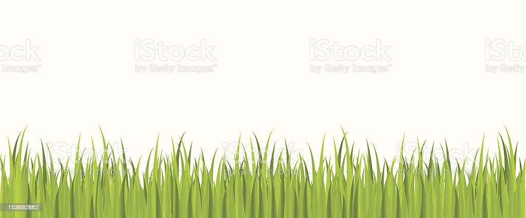 Seamless spring grass royalty-free stock vector art