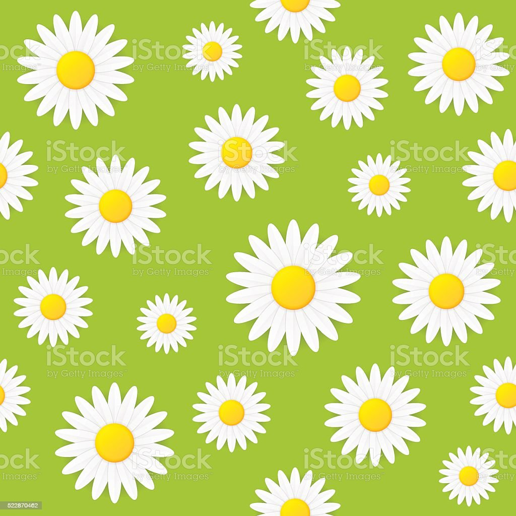 Seamless spring natural daisy flower vector background vector art illustration