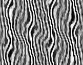 Seamless striped pattern. Zebra line vector illustration. Vector illustration.