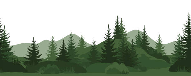 Seamless, Summer Forest Seamless Horizontal Landscape, Summer Mountain Forest with Fir Trees, Bushes and Grass Green Silhouettes on White Background. Vector woodland stock illustrations