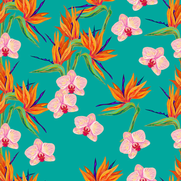 Seamless summer pattern with orchid and bird flower Seamless summer pattern with orchid and bird of paradise flowers vector background. Perfect for wallpapers, pattern fills, web page backgrounds, surface textures, textile bird of paradise plant stock illustrations