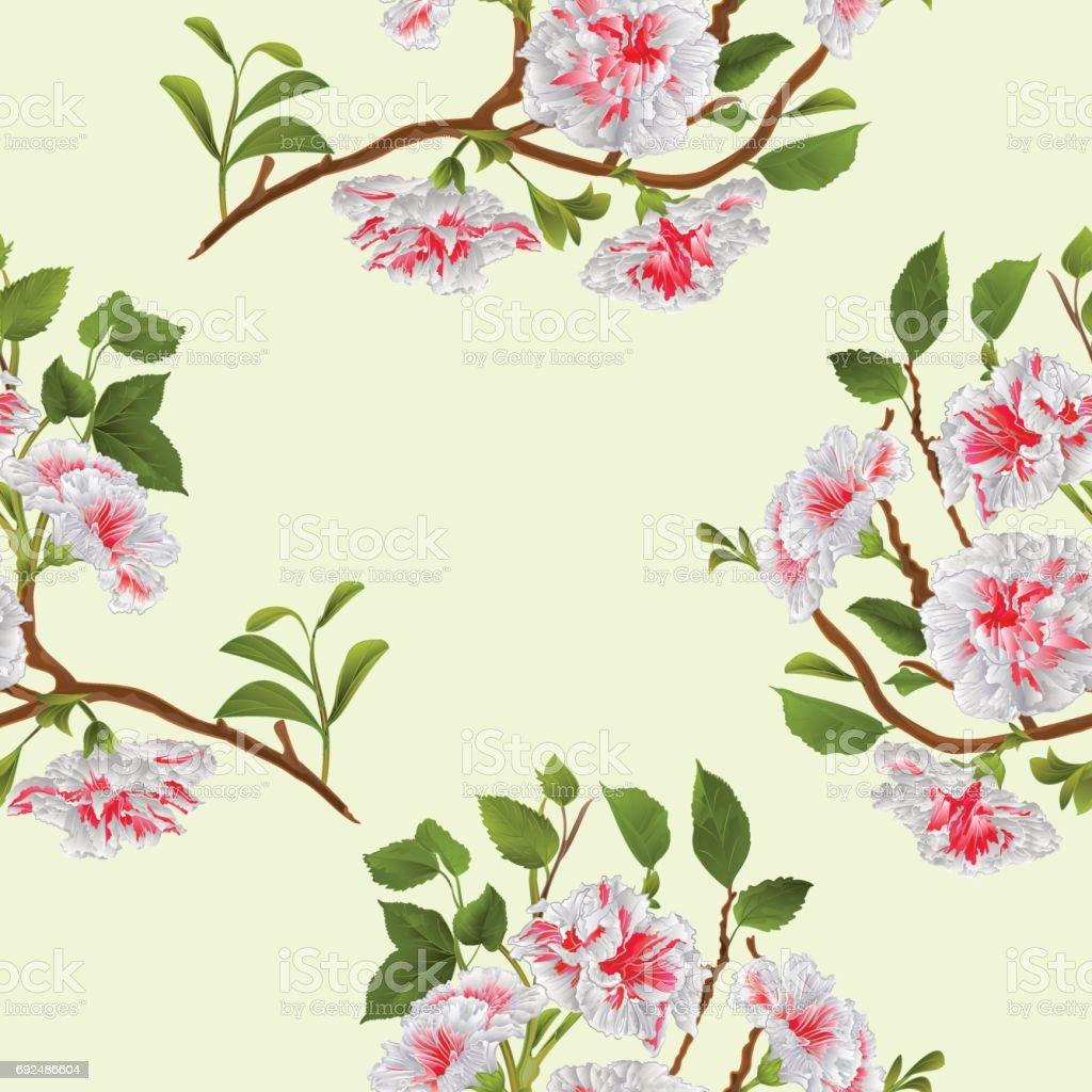Ilustracion De Mano De Textura Transparente Rama Blanco Hibiscus