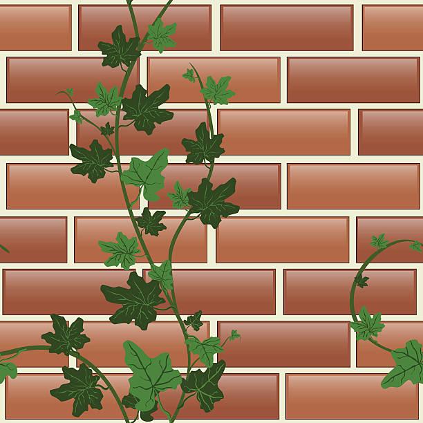 ilustrações de stock, clip art, desenhos animados e ícones de seamless texture brick with glare and ivy - ivy building