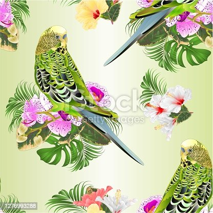 Seamless texture Budgerigar green  pets parakeet  on a bouquet with tropical flowers purple and white orchid phalenopsis and hybiscus  palm,philodendron  vintage vector illustration editable hand draw