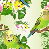 istock Seamless texture green parakeets Budgerigars home pet ,   or budgie  and Orchids cymbidium with tropical palm and philodendron   watercolor vintage 1277000114