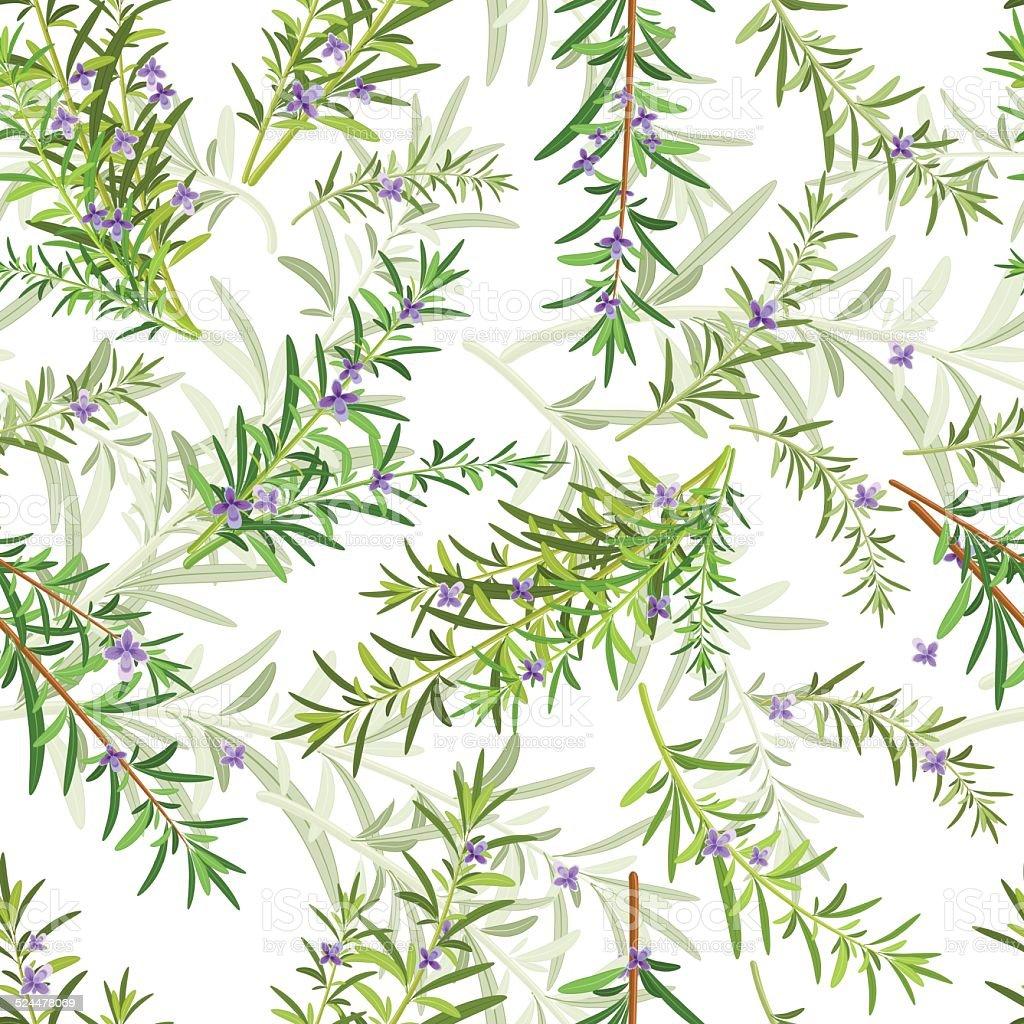 seamless texture of rosemary vector art illustration