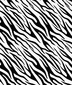 Seamless texture of zebra skin