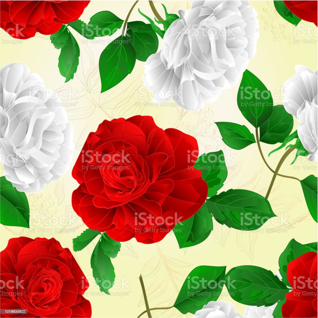 Seamless Texture Rose White And Red Flower And Leaves Natural