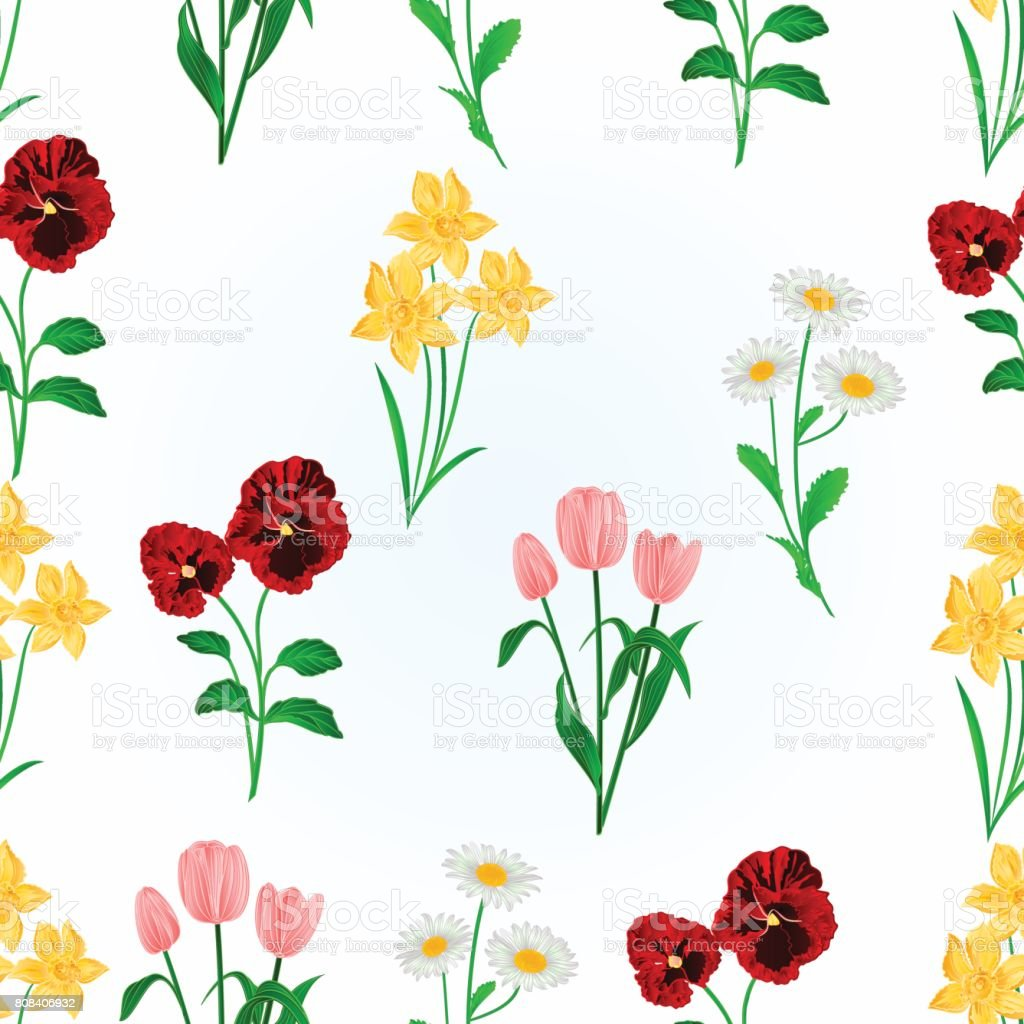 Seamless texture spring flowers Daffodils ,Pansies,Tulips and daisies vintage vector vector art illustration
