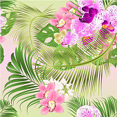 Seamless texture Tropical Orchids Cymbidium  pink and  Phalaenopsis purple and white flowers and Monstera and palm  watercolor vintage vector illustration editable hand draw