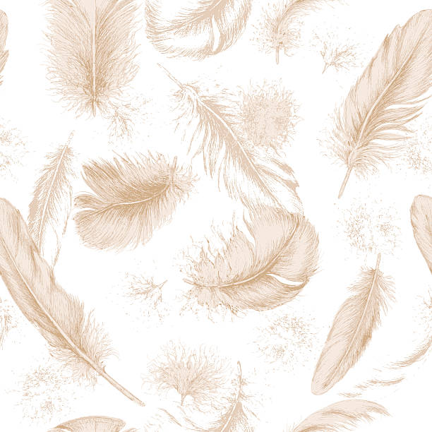 Seamless texture with hand drawn feathers. Hand drawn set of various feathers. Seamless background with flying beige feathers. bristle animal part stock illustrations