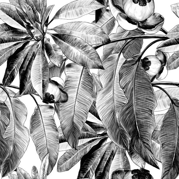 seamless texture with images of tropical plants and fruits Bush with large leaves branch – artystyczna grafika wektorowa