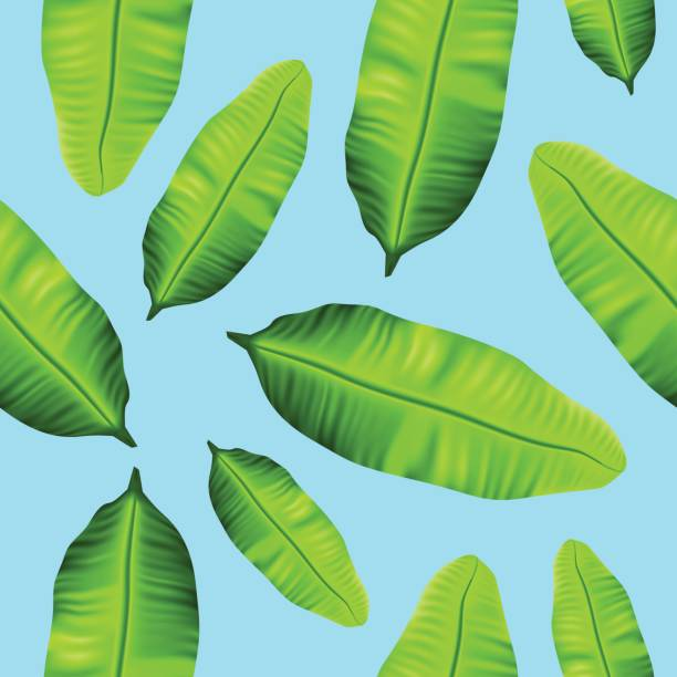 Seamless tropical banana leaves pattern on blue background vector art illustration