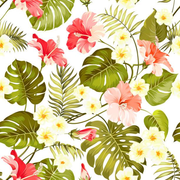 seamless tropical flower. - hibiskusgarten stock-grafiken, -clipart, -cartoons und -symbole