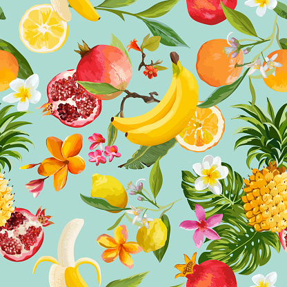 Fruit stock illustrations