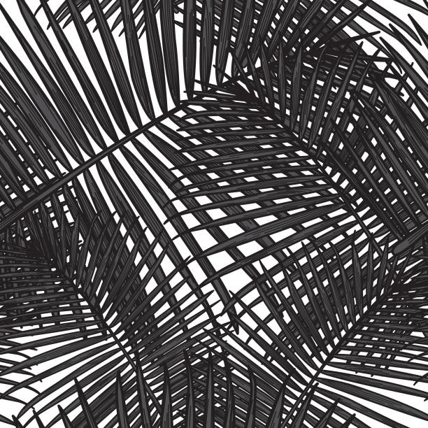 Seamless Tropical Palm Frond Pattern vector art illustration