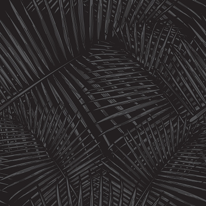 Seamless Tropical Palm Frond Pattern