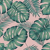 Seamless tropical pattern with leaves monstera and areca palm leaf on a pink background