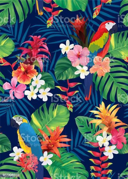 Seamless tropical pattern with macaw bird guzmania hibiscus flowers vector id927308514?b=1&k=6&m=927308514&s=612x612&h=raptatltnrtxayvfexfpevkbdksdn8sdrgwcs6as ug=