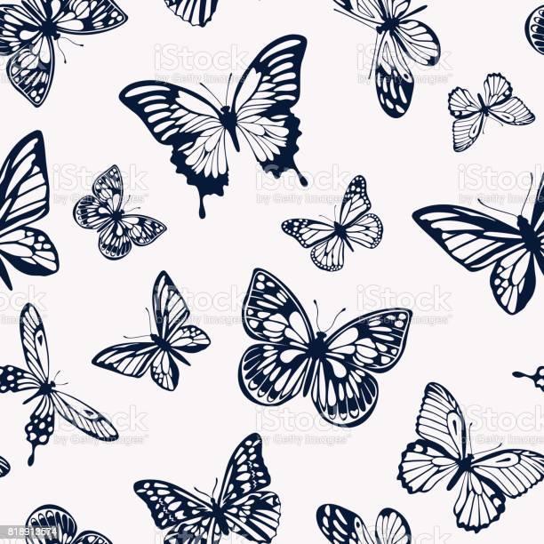 Seamless twotone pattern with silhouettes of butterflies vector vector id818913574?b=1&k=6&m=818913574&s=612x612&h=bgmau2zylbuq1e21rlrdlstdjusvrytxsy5smawhl7a=