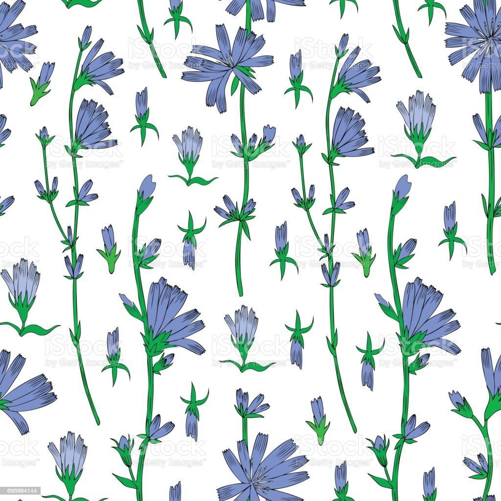 motif floral vectorielle continue chicor e fleur graphiques dessin s la main botanique. Black Bedroom Furniture Sets. Home Design Ideas