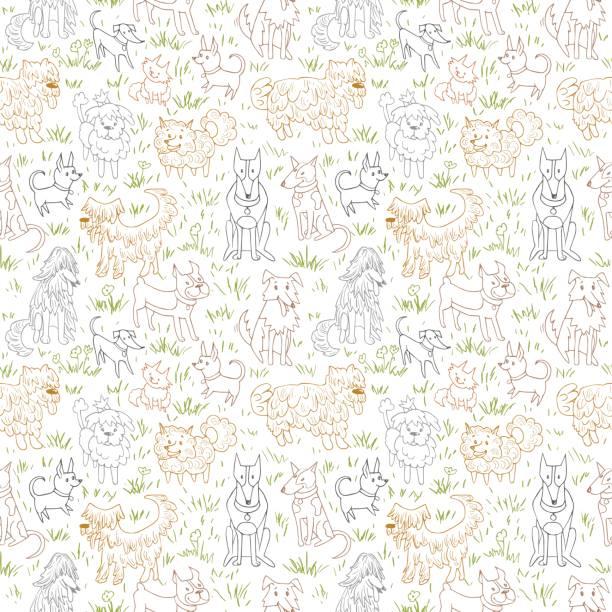 Seamless vector illustration with bulldog, bobtail, dachshund, bullterrier, doberman, spitz, chihuahua Cute dogs pattern. Seamless vector illustration with bulldog, bobtail, dachshund, bullterrier, doberman, spitz, chihuahua bobtail squid stock illustrations