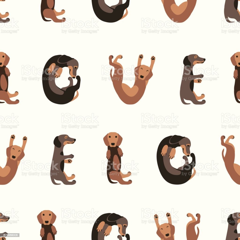Seamless vector pattern - dachshund dog vector art illustration