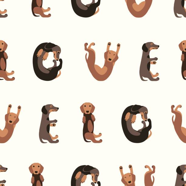 bildbanksillustrationer, clip art samt tecknat material och ikoner med sömlös vektor mönster-tax hund - tax