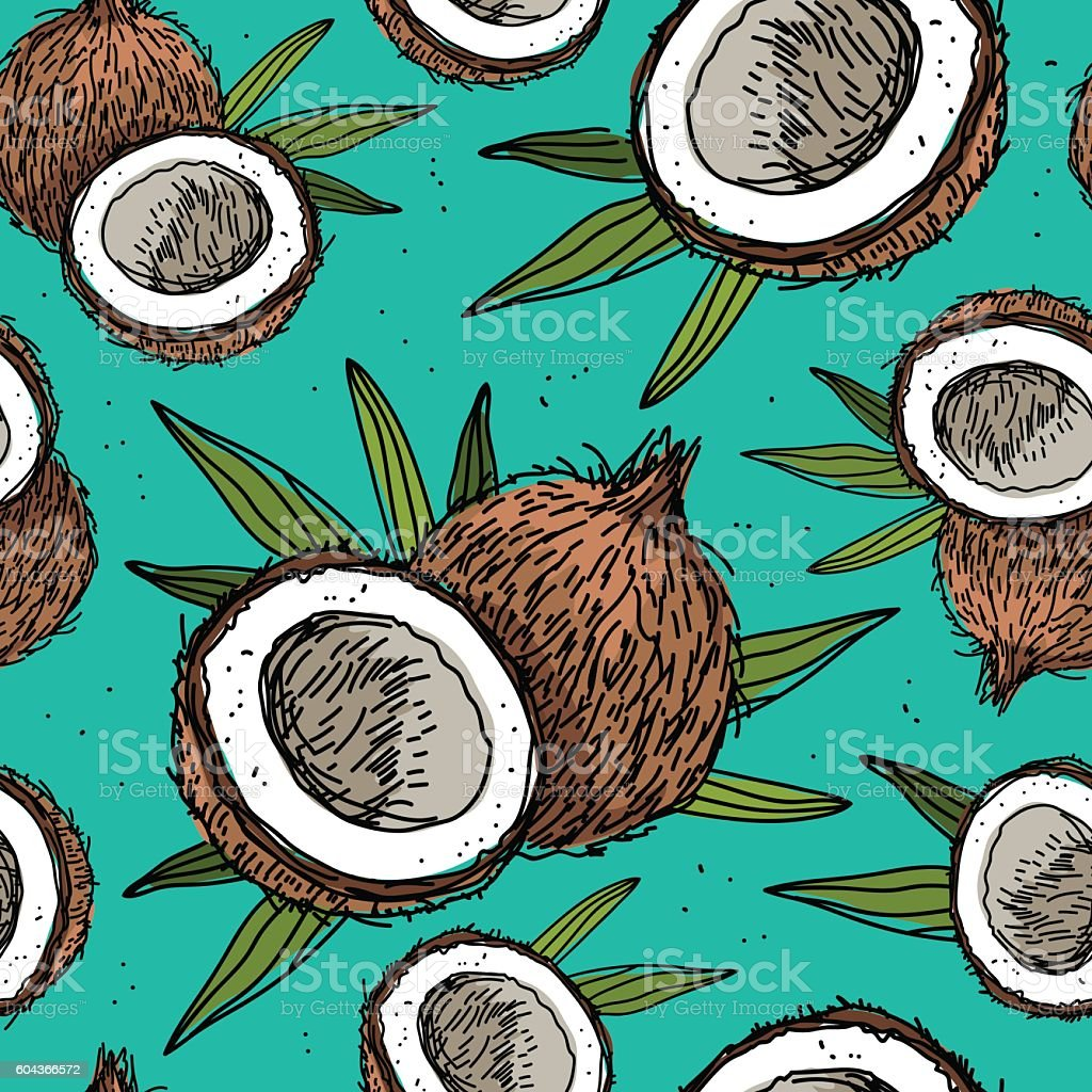 Seamless vector pattern of coconuts vector art illustration